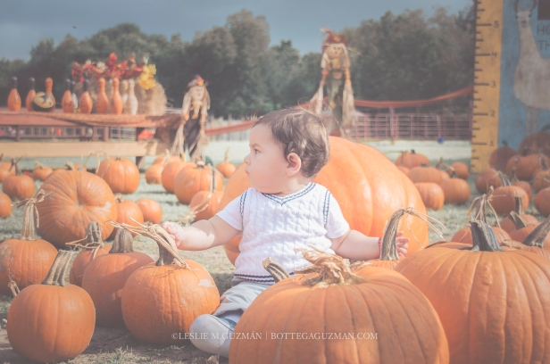 Welcoming The Cooler Season with First Fall Activity - Pumpkin Patch